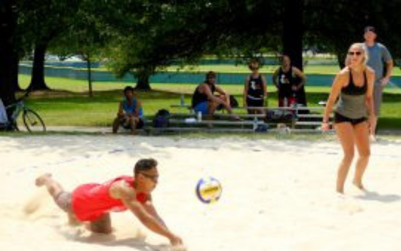 Volleyball Social Sports Leagues Jax Fray Fraylife